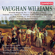 Produktbilde for Vaughan Williams: Orchestral Works (CD)