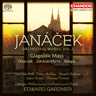 Produktbilde for Janácek: Orchestral Work Vol. 3 (CD)