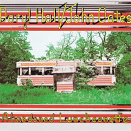 Produktbilde for Abandoned Luncheonette (USA-import) (VINYL)