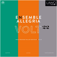 Ensemble Allegria - Volt 22 (CD)