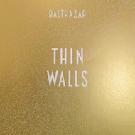 Produktbilde for Thin Walls (VINYL + CD)