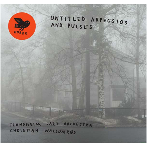 Untitled Arpeggios And Pulses (CD)