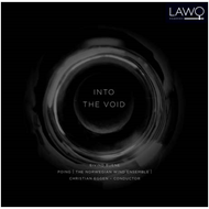 Buene: Into The Void (CD)