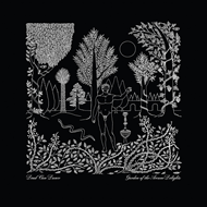 Garden Of The Arcane Delights / Peel Sessions (VINYL)