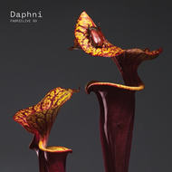 Fabriclive 93 (CD)