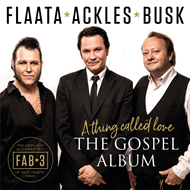 The Gospel Album - A Thing Called Love (CD)