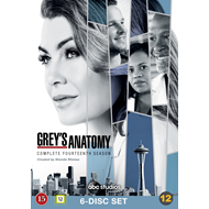 Grey's Anatomy - Sesong 14 (DVD)