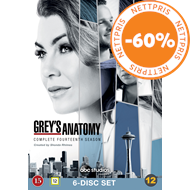 Produktbilde for Grey's Anatomy - Sesong 14 (DVD)