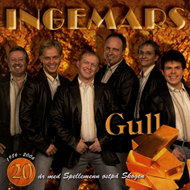 Produktbilde for Gull - 20 År (CD)