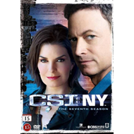 CSI - New York - Sesong 7 (DVD)