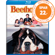 Produktbilde for Beethoven (UK-import) (BLU-RAY)