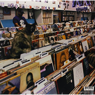 Endtroducing... (VINYL)