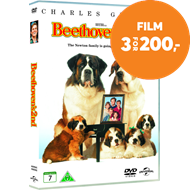 Beethovens Andre (DVD)