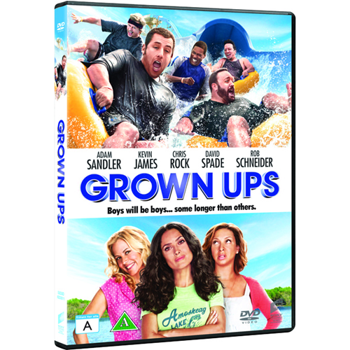 Grown Ups (DVD)