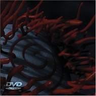 Produktbilde for Tool - Schism (DVD)